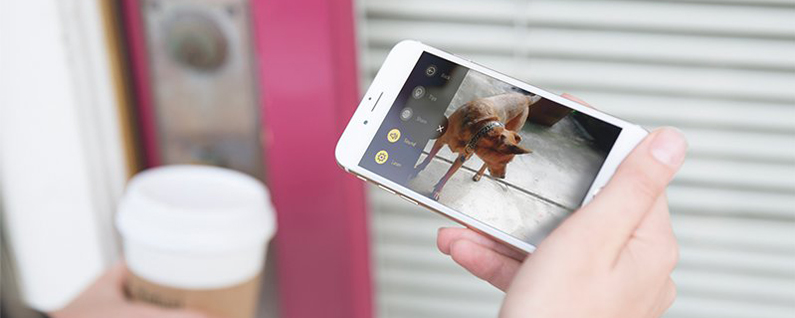 Award-winning Petcube Gets Better with App Update