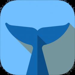 mirror image flipper app