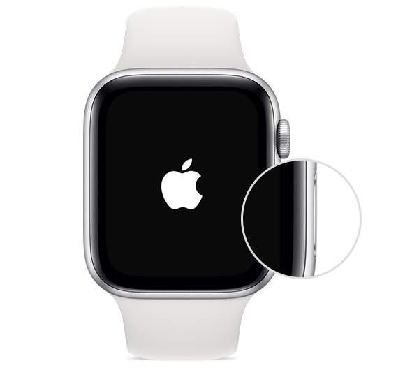 how to turn on apple watch
