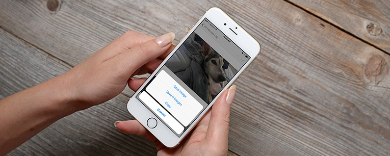 How To Save Images Pictures Photos From An Iphone Message Or