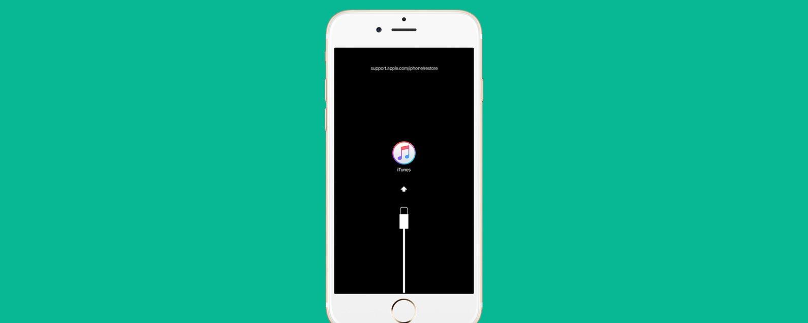 Hook up iPhone aan iTunes
