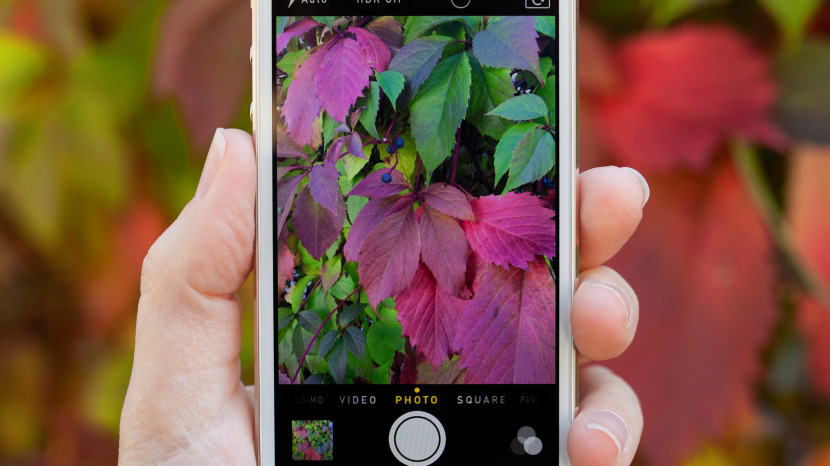 How to Crop Pictures on iPhone (Without an Editing App