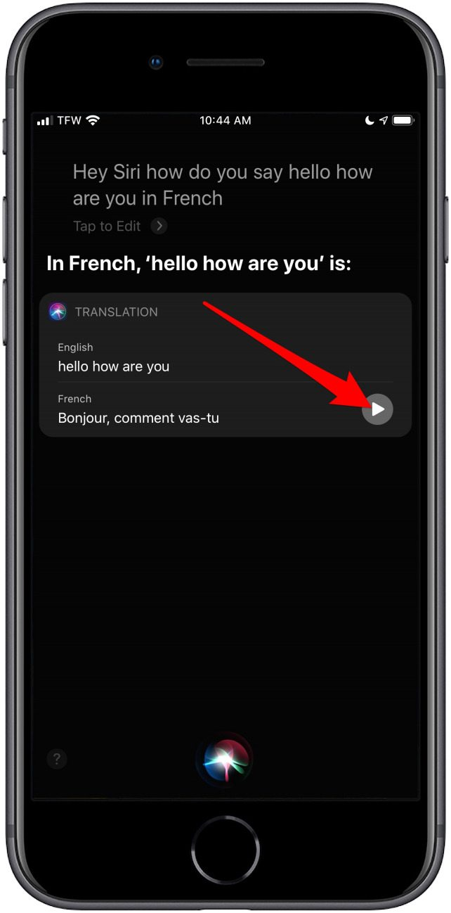 How to Use Siri to Translate English to Other Languages on ...