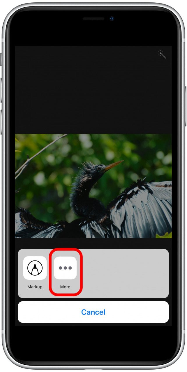 photos app-extensions screen with more options highlighted