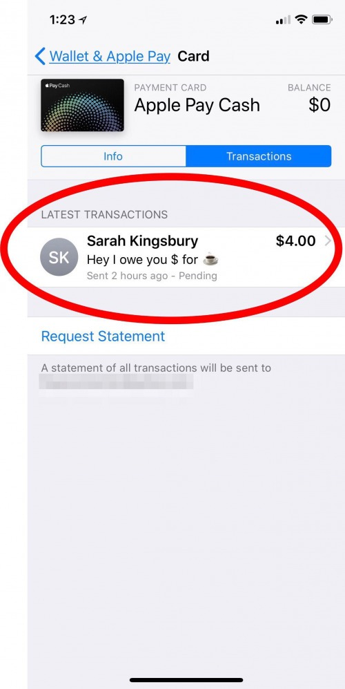How to Cancel a Payment in Apple Pay on Your iPhone