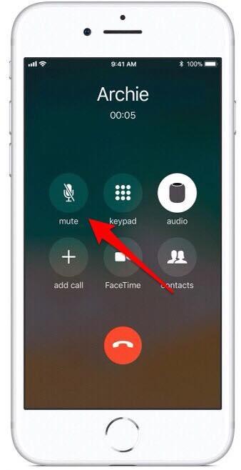 mute a call on speakerphone