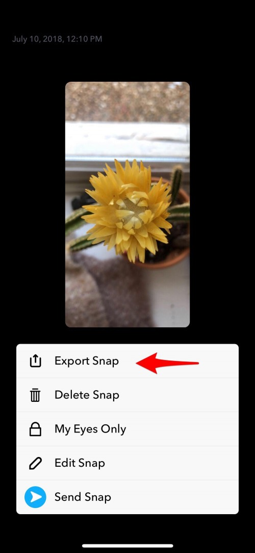 Snapchat Saver: How to Save a Photo from Snapchat | iPhoneLife com