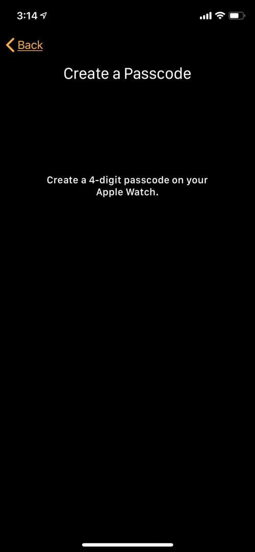 passcode for apple watch