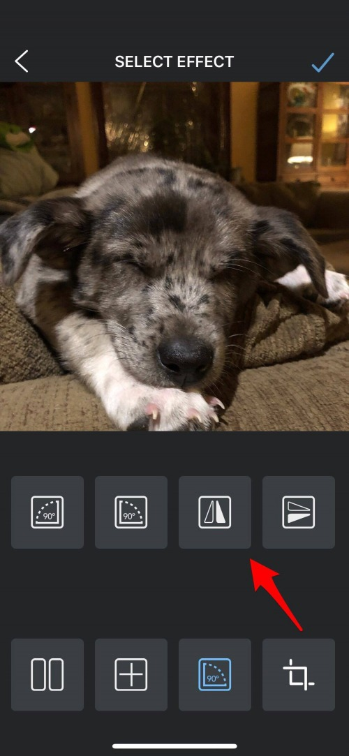 flip image with the flipper app