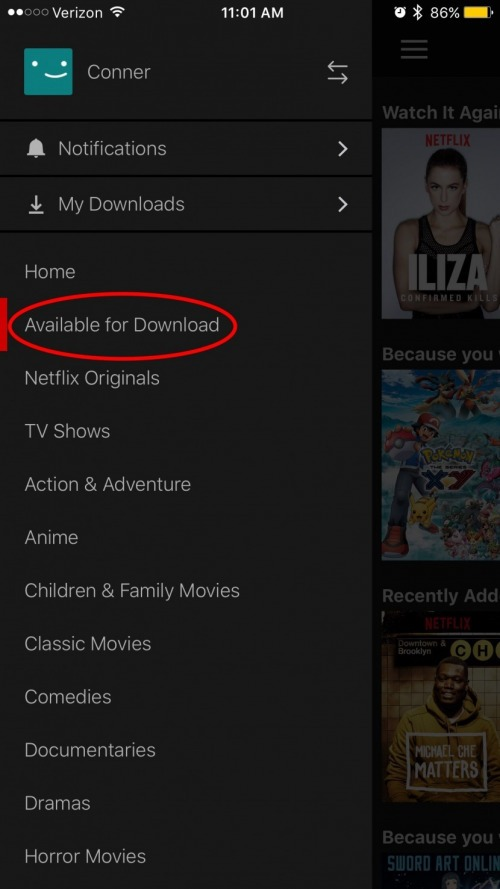 How do you download movies on netflix on ipad