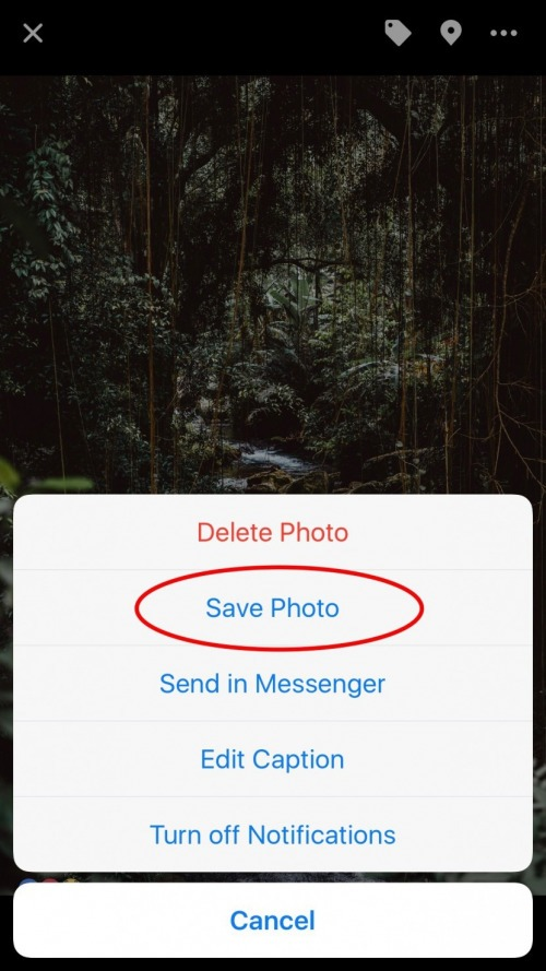 how to send pictures on kijiji app