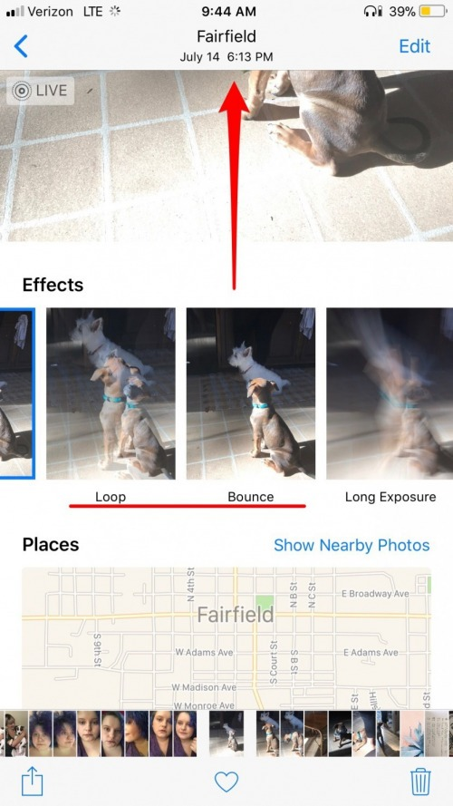Live Photos: The Complete Guide to iPhone's Moving Pictures (UPDATED