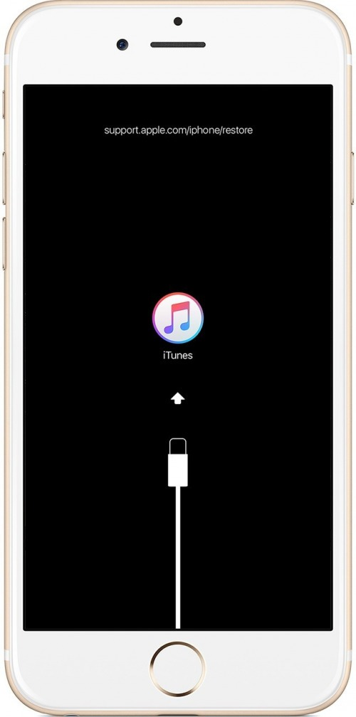 3 Best Methods: How to Fix iPhone Disabled  Connect to