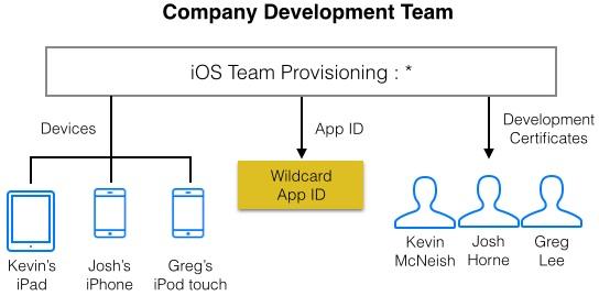 Company development team